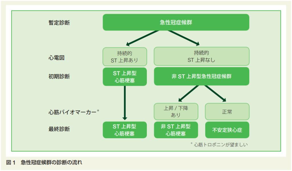 日本循環器学会「急性冠症候群診療ガイドライン(2018 年改訂版 ...